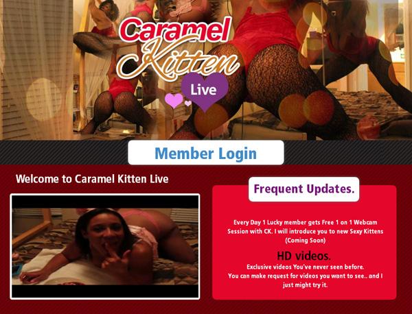 Free-Caramel-Kitten-Live-Films.jpg
